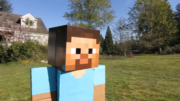 Minecraft Swap